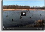 DU-TV Better Waterfowling Tip
