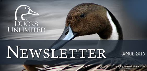 Ducks Unlimited Newsletter: April 2013