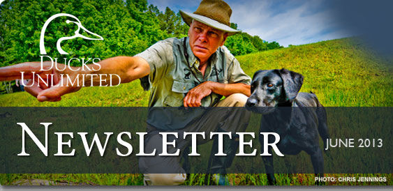 Ducks Unlimited Newsletter: June 2013