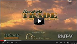 Duck Calling Tips