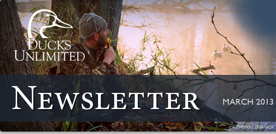 Ducks Unlimited Newsletter: March 2013