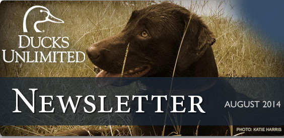 Ducks Unlimited Newsletter