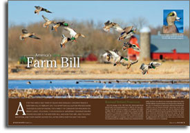 America's 2014 Farm Bill