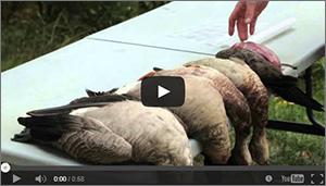 DU TV Duck Tactics with Tyson Tabler