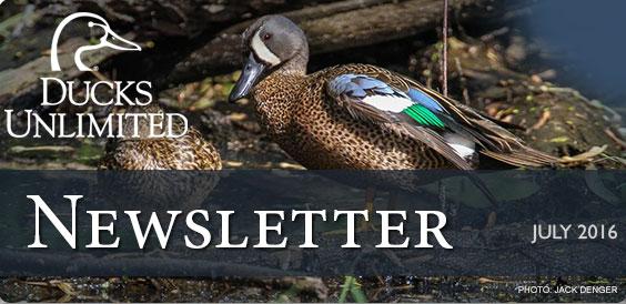 Ducks Unlimited Newsletter